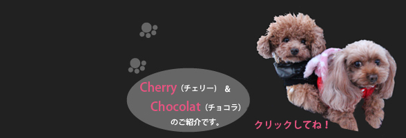 Cherry's spacial gallery!